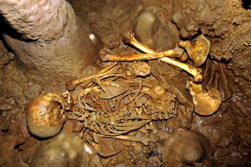 esqueleto-1024x679
