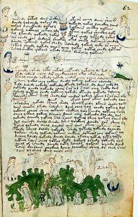 voynich-scritte